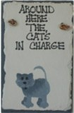 CAT'S IN CHARGE