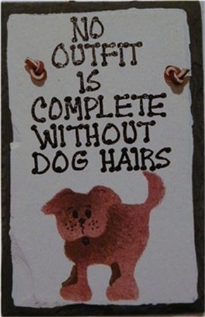 NO OUTFIT DOG HAIR