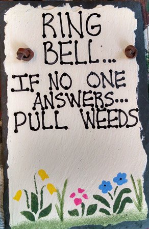 PULL WEEDS